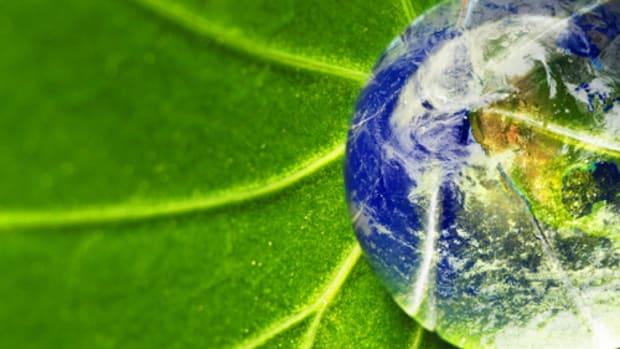 Op-ed - Bitcoin the Environmentalist
