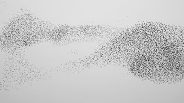 Op-ed - Swarm Redefines Crowdfunding
