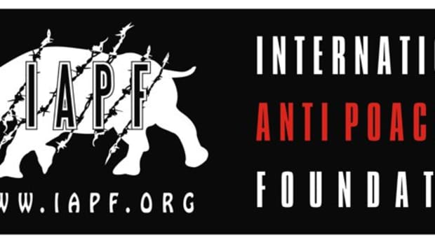 Op-ed - IAPF and BITPOS Join Forces for Donations