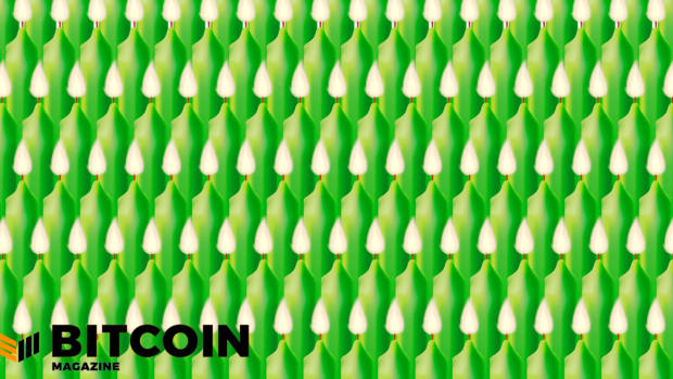 The bitcoin price has risen significantly since first discovered, resulting in many green candles.
