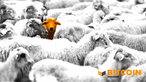Standing out, orange, Bitcoiner
