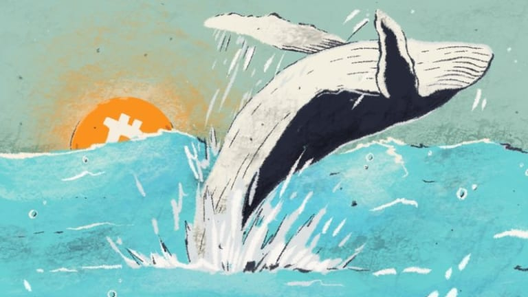 Was a Lone Whale Really Behind Bitcoin's 2017 Bull Run? Don't Bet on It