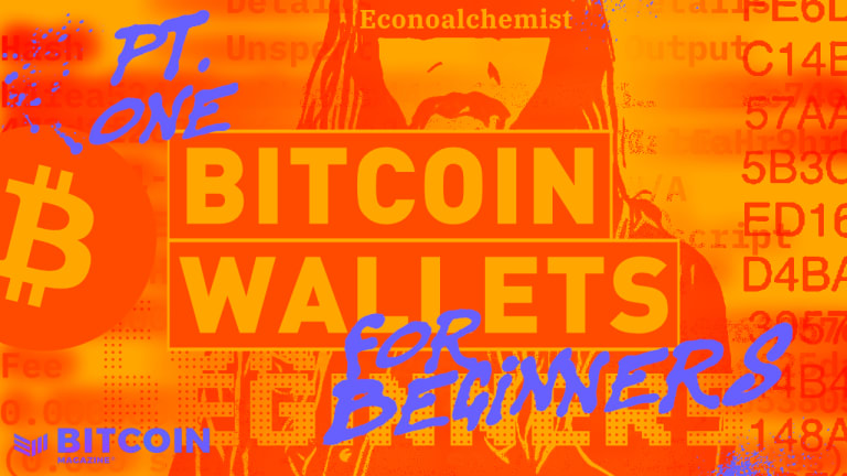 Bitcoin Wallets For Beginners, Part One: Self Custody And Avoiding KYC