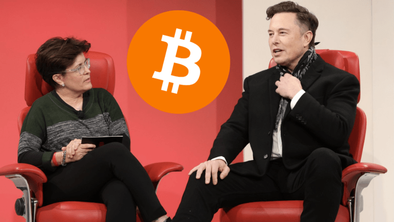 Tesla CEO Elon Musk: Bitcoin and Crypto Take Aim at Centralized Government