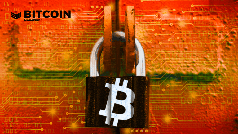 Bitcoin Will Protect Your Wealth From The Government