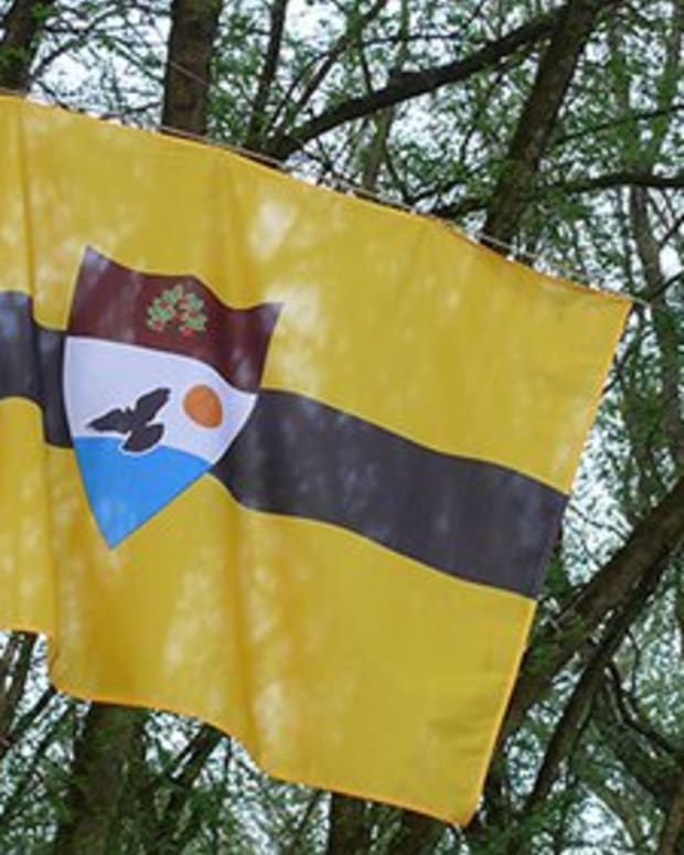 Op-ed - Newly Declared European Microstate Liberland Plans to Create Its Own Digital Currency