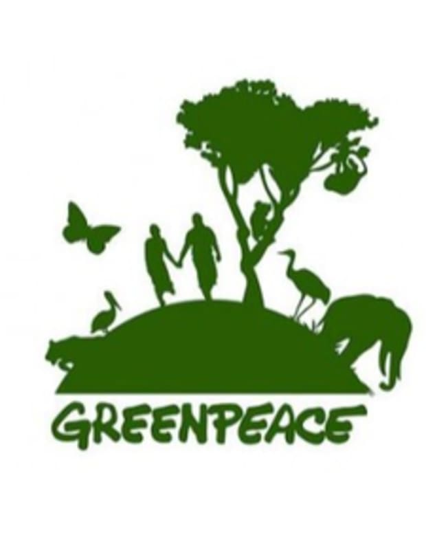 Op-ed - Greenpeace Now Accepting Bitcoin