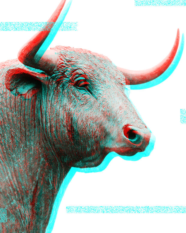 bull market bitcoin spring
