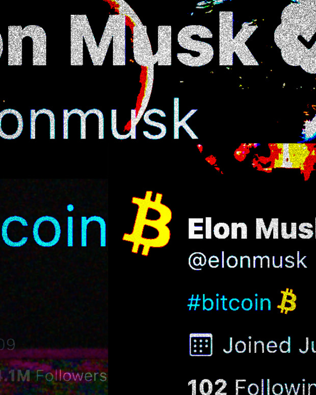 "After Elon Musk, the richest person in the world, changed his Twitter bio to ""bitcoin,"" attention and the price surged."