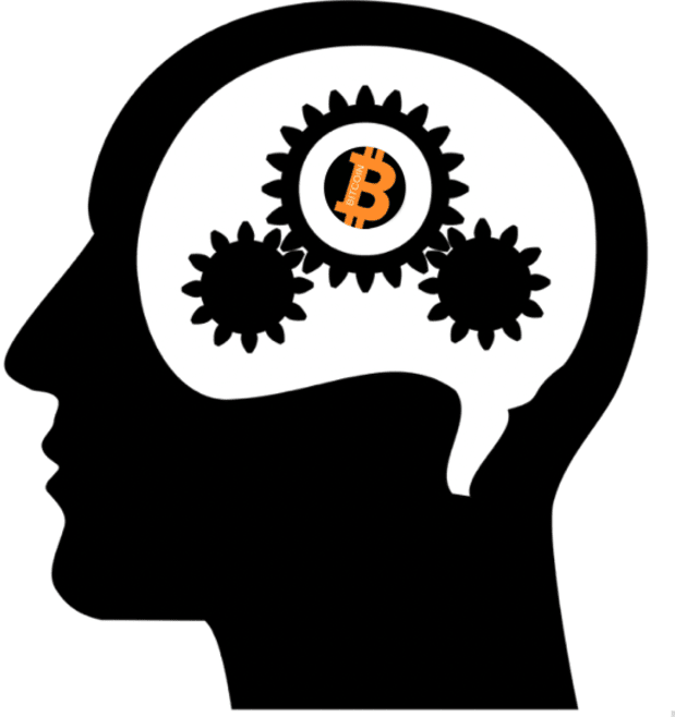 A Look At Bitcoin And Biases: Price