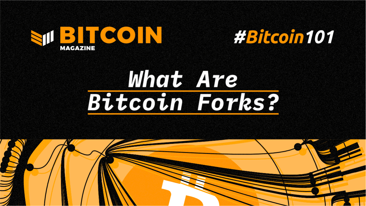 What Are Bitcoin Forks?