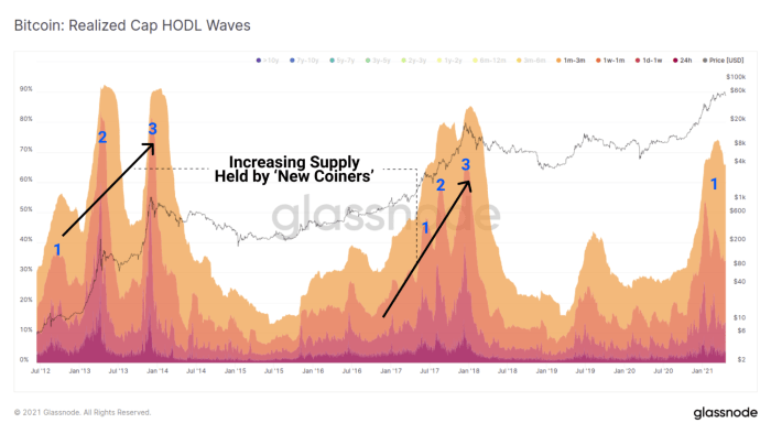glassnode bitcoin realized cap hodl waves