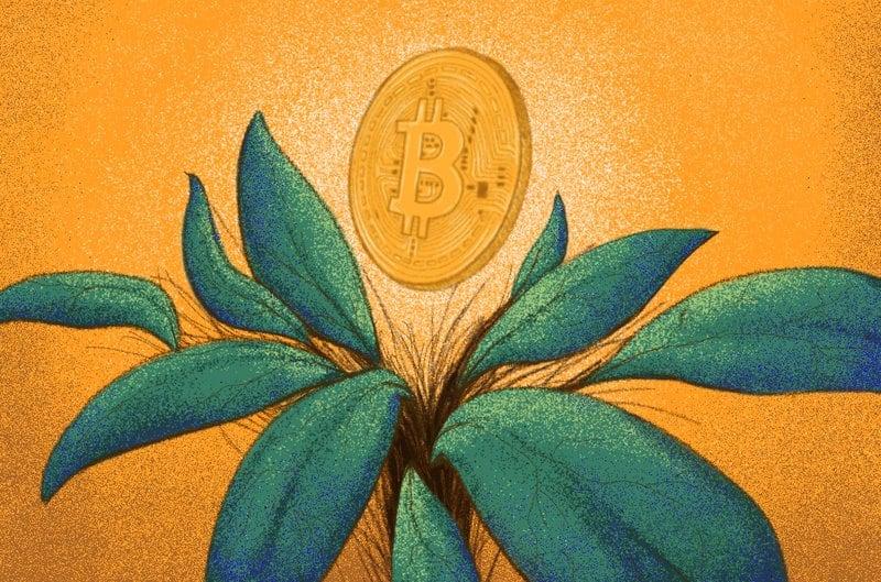 Genesis Bitcoin Miner Raises $125 Million