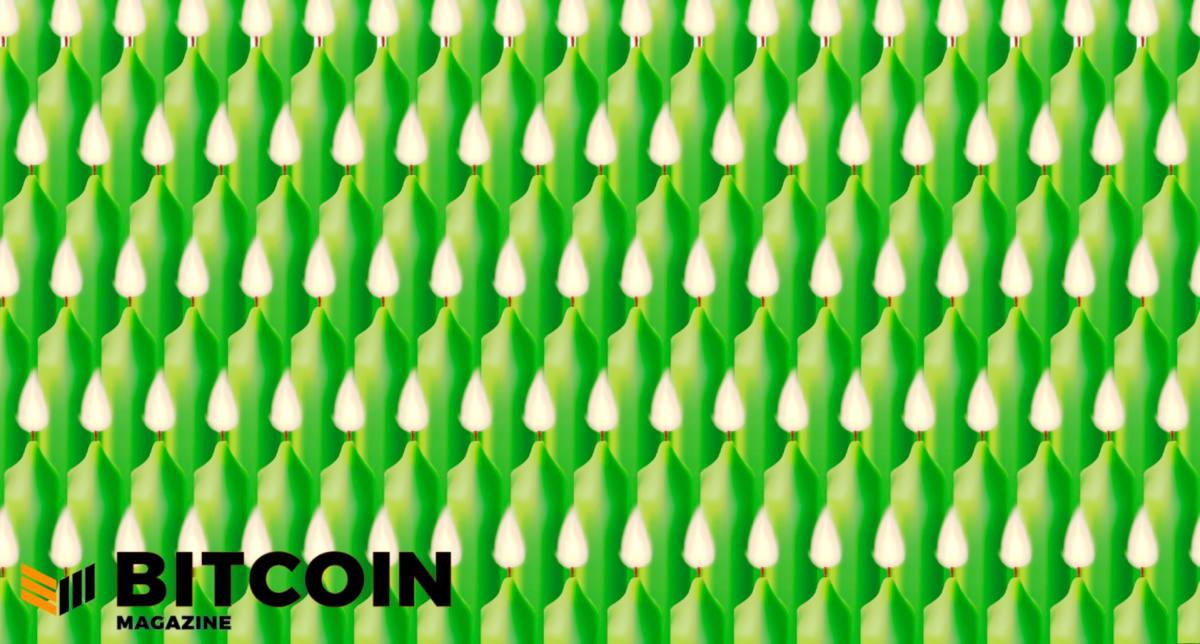 U.S. Saw $4.1 Billion 2020 Bitcoin Profit
