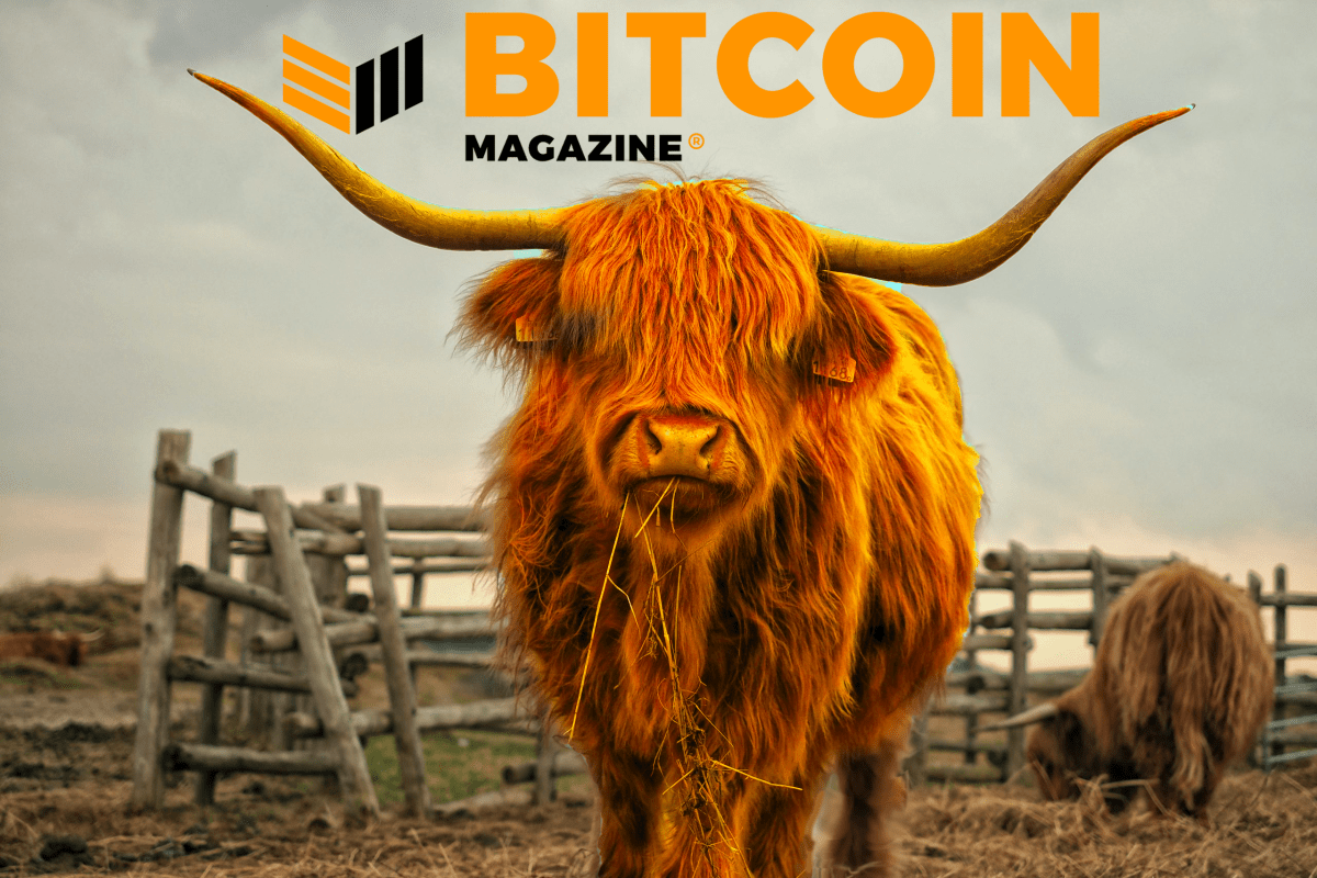 Bull Bitcoin Exchange To Integrate Lightning Network