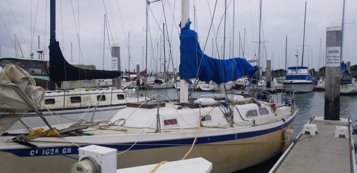 The Velela resting in the harbor.