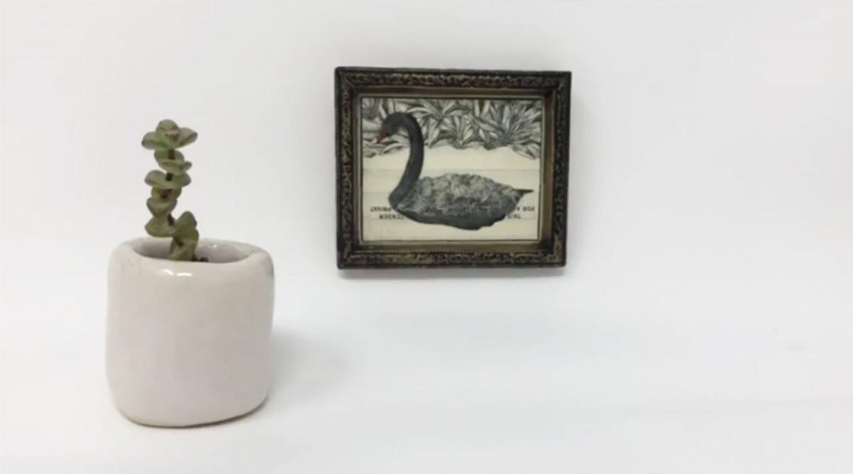 Black Swan Bitcoin Art