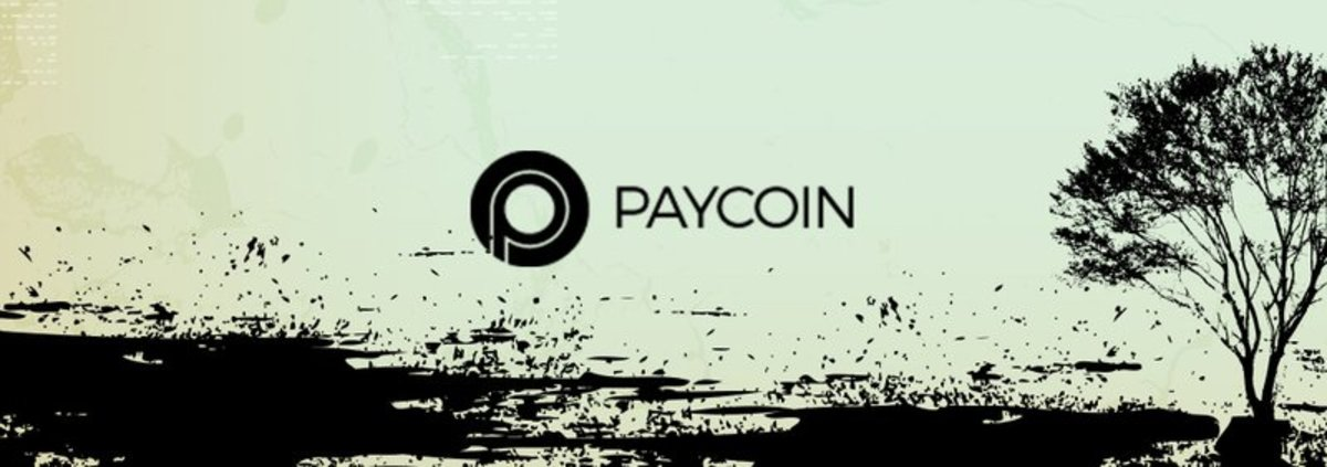 Op-ed - The Death of Paycoin: Employee Video Reveals Internal Chaos