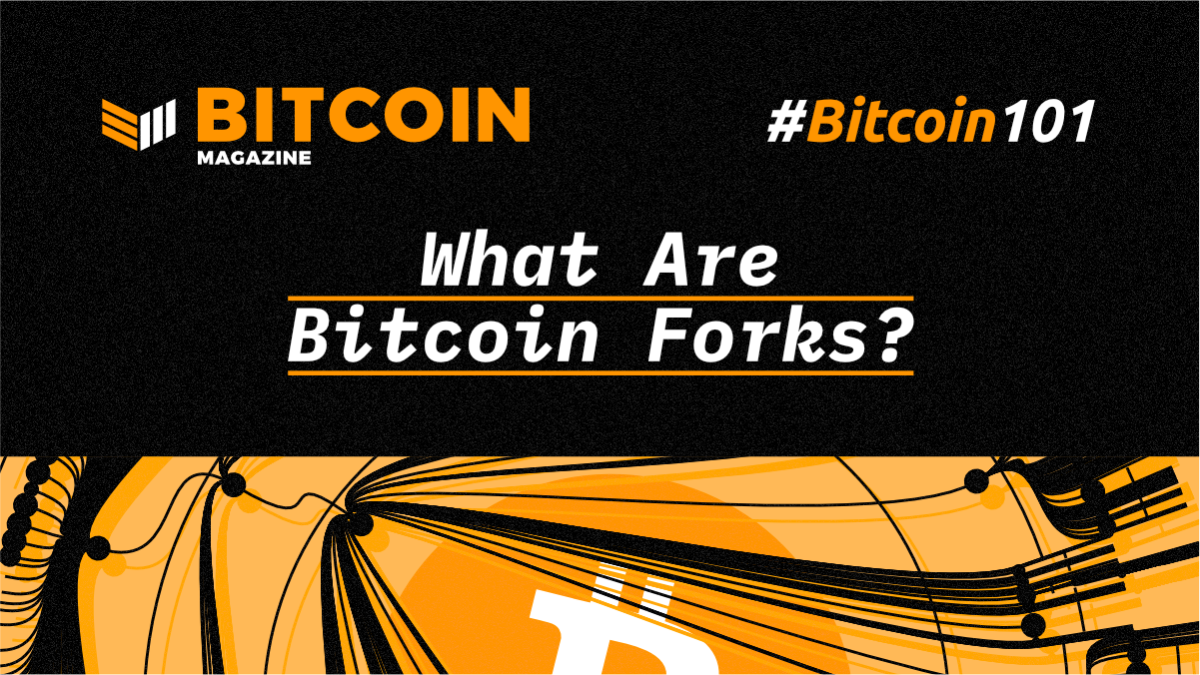 btc101-WhatAreBitcoinForks
