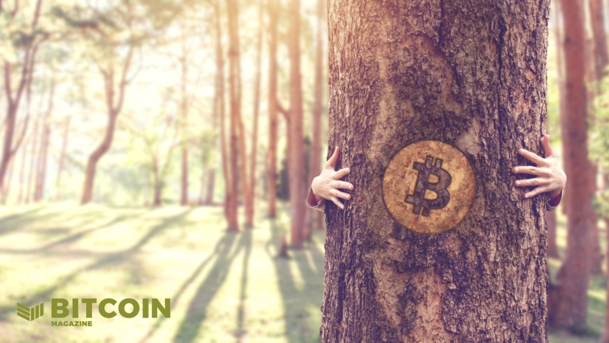 Bitcoin Institutions For The Bitcoin Age